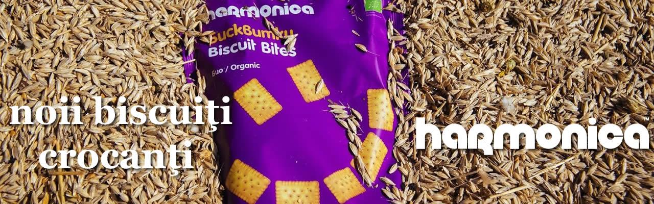 Hamonica-biscuiti-bio-organici-crocanti