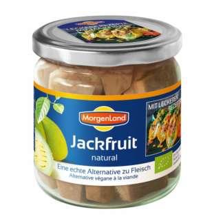 Bio Jackfruit Natural la Borcan Morgenland 180 g